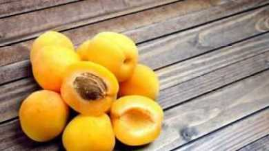 Photo of 7 богатых железом фруктов для предотвращения анемии