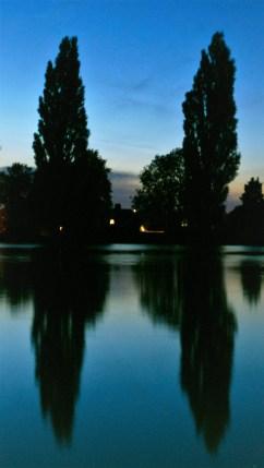 Summer walk around the local lake