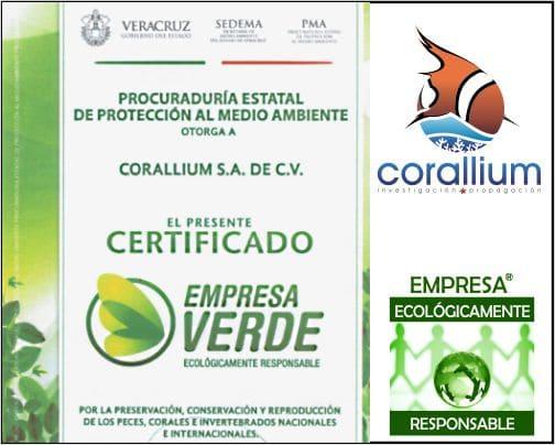 Certificacion Verde