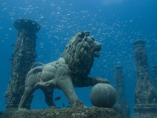 https://i2.wp.com/coralmorphologic.com/b/wp-content/uploads/2008/08/neptune-lion-side.jpg