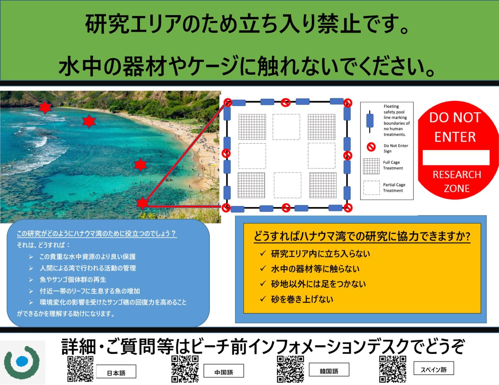 IMPACT STUDY SIGN Japanese (1).jpg