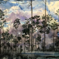 Beautiful Disasters--Purple Sky_Elizabeth Thompson