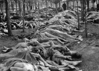 Bodies at Bergen Belsen Camp