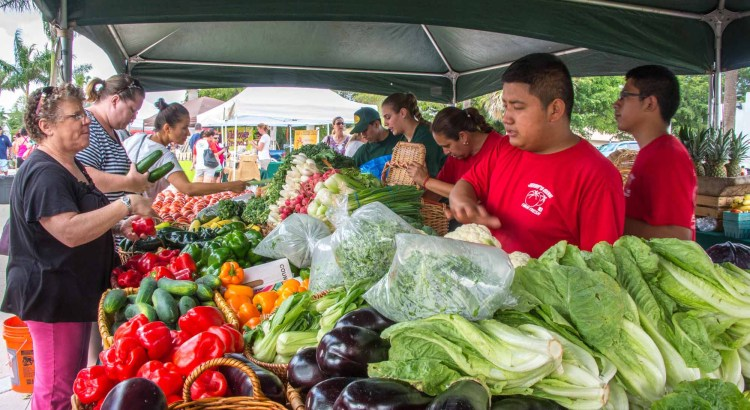 Farmer's Market Makes its Debut in Coral Springs