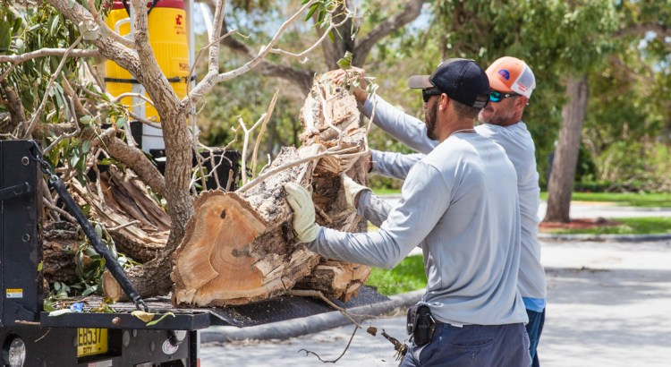 Hurricane Debris Pickup Coming to Gated Communities in Coral Springs