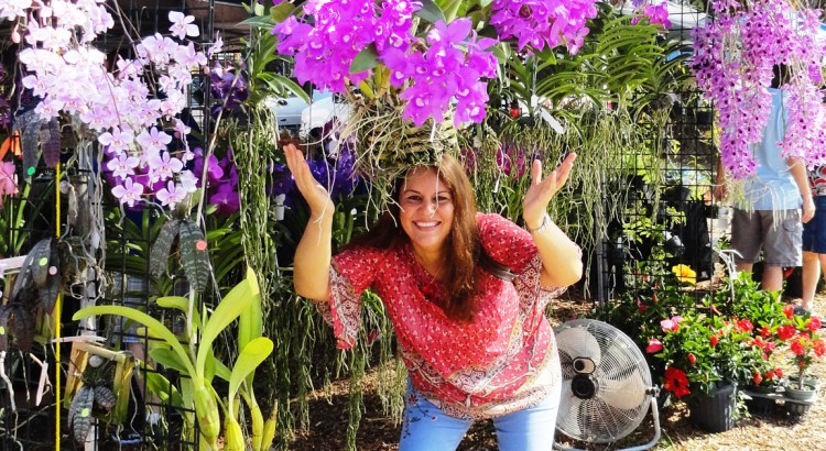 Sawgrass Nature Center Holds Second Annual Orchid Festival