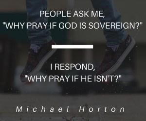 Michael Horton Quote