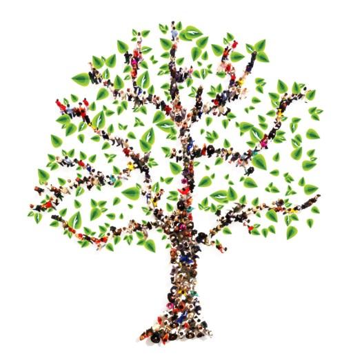 Constelaciones familiares - Corazón y vida - Sala 03 - Ecocentro - Tfno.: 675 829 401 (sóloWhatsApp) - info@corazonyvidamadrid.com