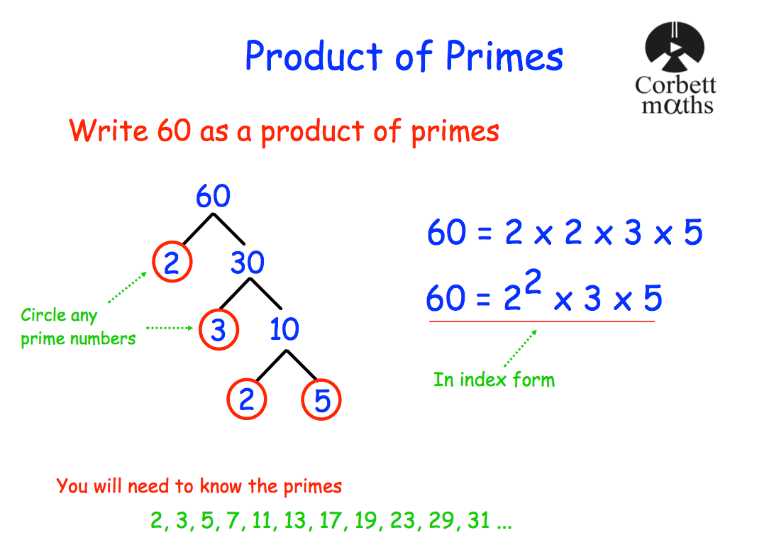 Product Of Primes Revision