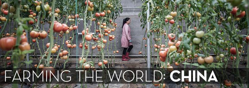 Farming the World China