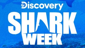How to Stream Discovery Channel Without Cable (Updated Guide)