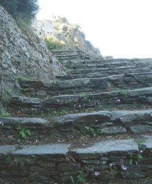 Nonza (Corsica) > Tornando al paese