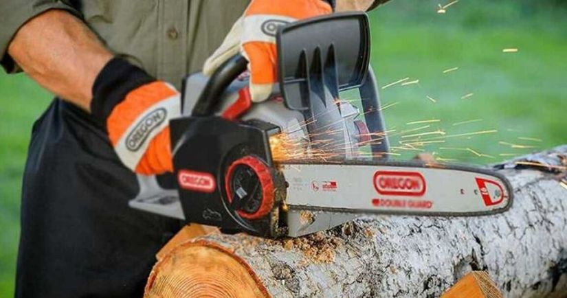 using the best cordless chainsaw to cut trees