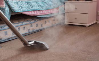 Best Carpet Steam Cleaner 2019