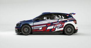 GRYAZIN, A TEMPORADA COMPLETA EN EL WRC2