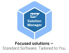 Solution Manager Focused Solutions