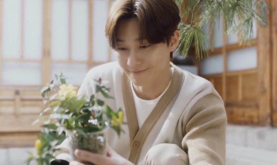 Assista: Park Seo Joon promove a Hora do Planeta e um estilo de vida ecologicamente correto no vídeo de campanha do WWF