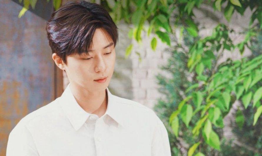 Park Seo Joon reflete sobre sua filmografia + amigos famosos o parabenizam pelo 10º aniversário de estreia