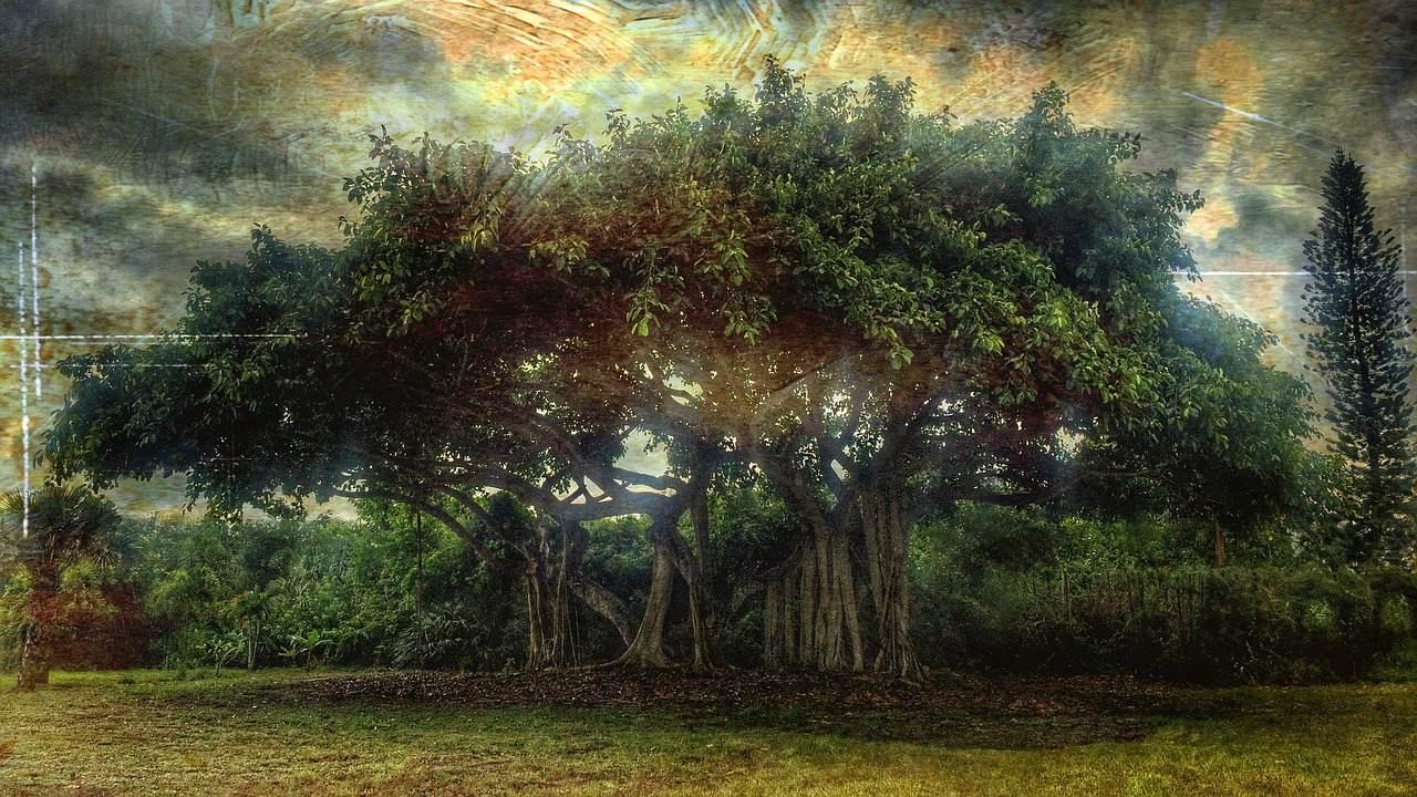 【解説】セフィロトの世界と生命の樹&各セフィラーの大天使一覧