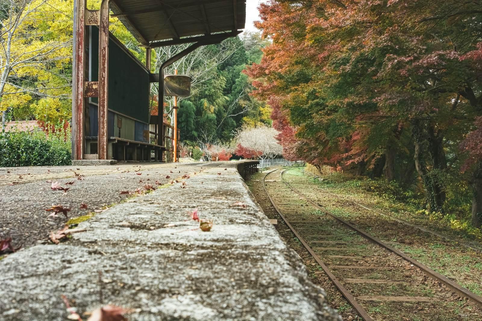『久しぶりに電車に乗ったら変な駅についた話』|本当にあった不思議な体験