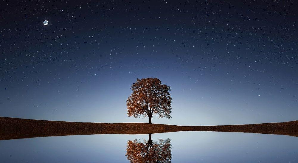 【明晰夢】夢から覚めそうな時夢の中に留まる方法・目覚める方法