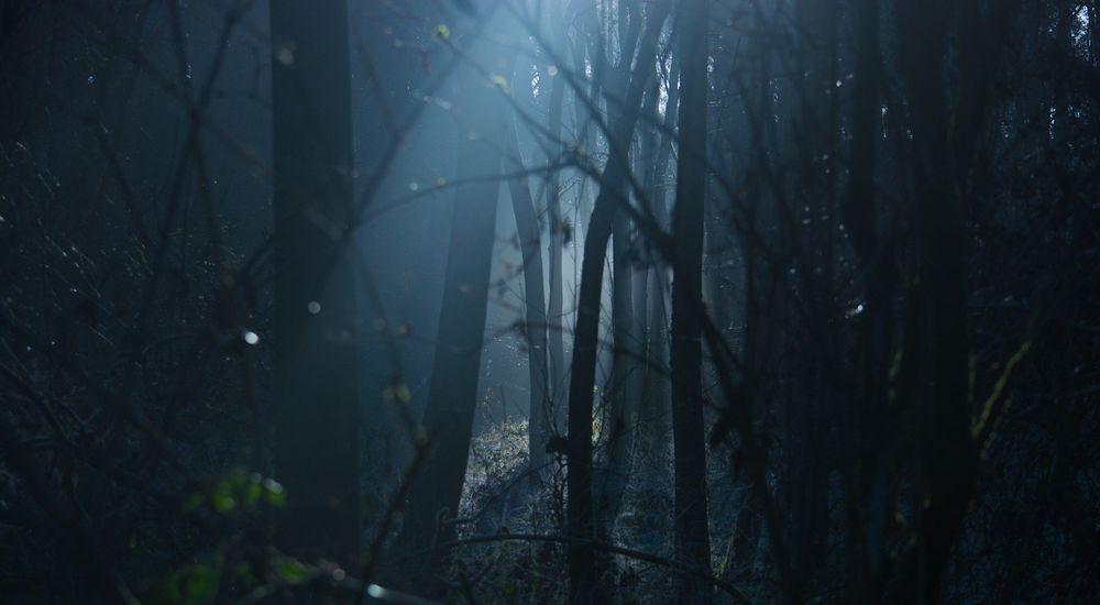 『迫りくるモノ』呪いにまつわる怖い話【17】|厳選 洒落怖名作まとめ