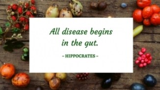 all-disease-begins-in-the-gut