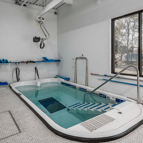 SwimEx Triton Therapy Pool with Underwater Treadmill