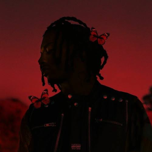 Playboi Carti Money And Drugs Mp3 Download