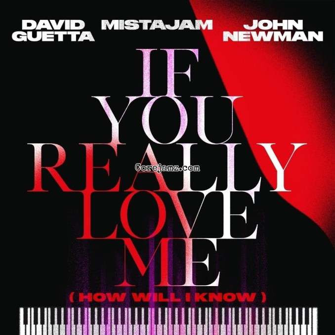 David Guetta, MistaJam, John Newman If You Really Love Me (How Will I Know) (Marten Hørger Remix) Mp3 Download