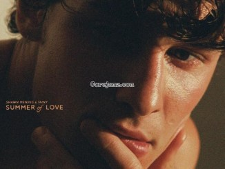 Shawn Mendes, Tainy Summer of Love Mp3 Download