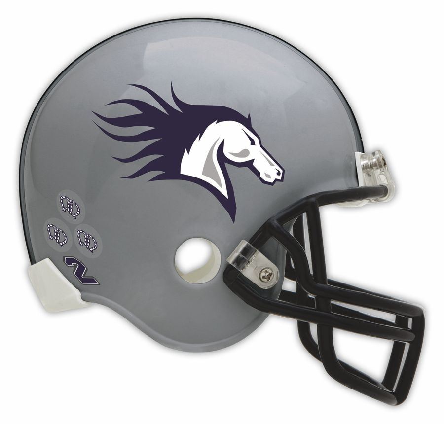 Football Helmet Vinyl Wraps : Dalco athletic offers football helmet decals february