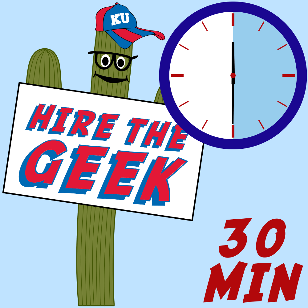 Hire The Geek - 30 Minutes