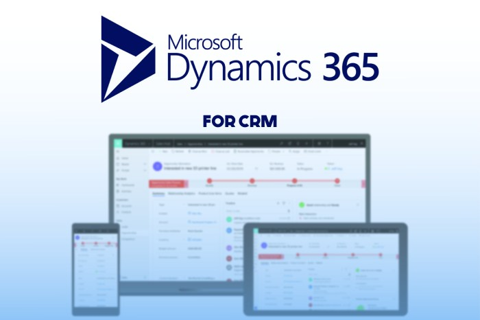 2 ms dynamics 365 for crm