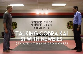 TV Ate My Brain – Cobra Kai: Season 1