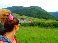 looking back at Pollett's Cove