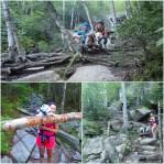 Chocorua Trail Sites