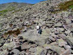 Kasper on the trail