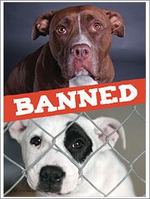 banned-thumbnail.jpg