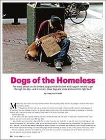 dog-of-homeless-thumbnail