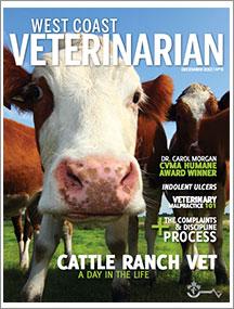 WCV-Dec-2012-thumbnail
