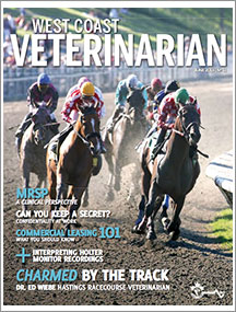 WCV-June-2013-thumbnail
