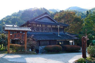kayo-nakashima8