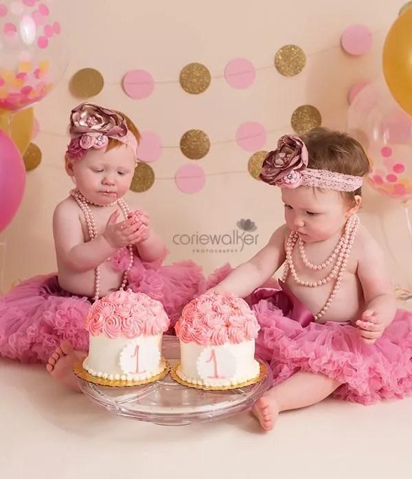 Northeast Ohio Milestone Photographer | A&E Twins are One!