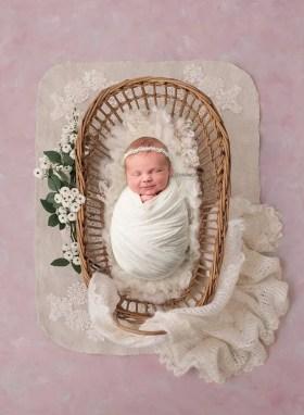 newborn bassinett photo