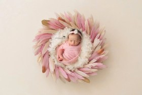 newborn fairy tale pink feathers