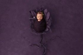 newborn purple leaves