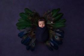 Solon OH Baby Photographer