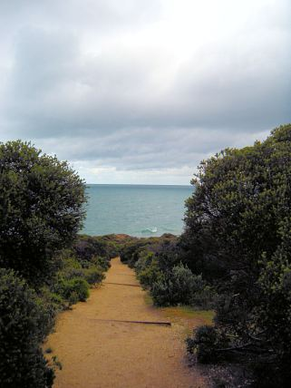 Pathway from lighthouse to ocean view.