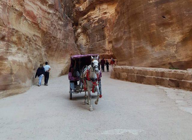 Povestea iordaniană, în National Geographic